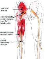 Sciatica Stretches